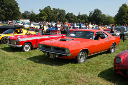 Herald next to 'cuda
