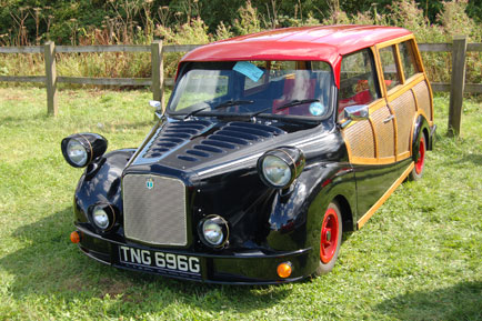 "...alongside some more ""interesting"" ones like this mini conversion"